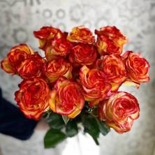 15 роз High Orange