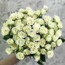 15 роз куст белые