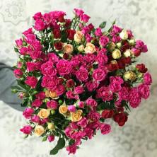 15 роз куст яркие