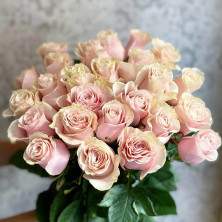 25 роз Pink Mondial