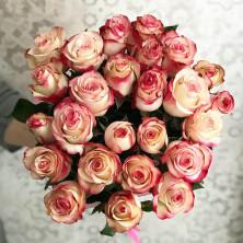 25 роз Sweetness